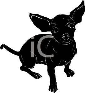 Clip Art Chihuahua Clipart chihuahua clipart panda free images