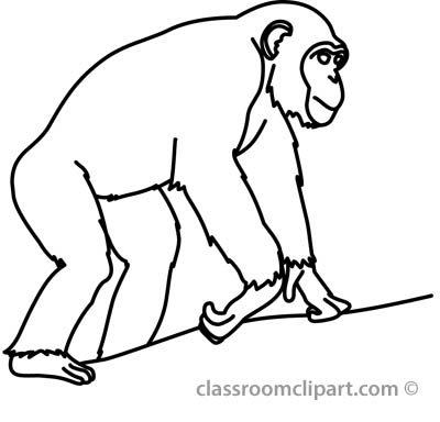 Clip Art Chimpanzee Clipart chimpanzee clipart black and white panda free clipart