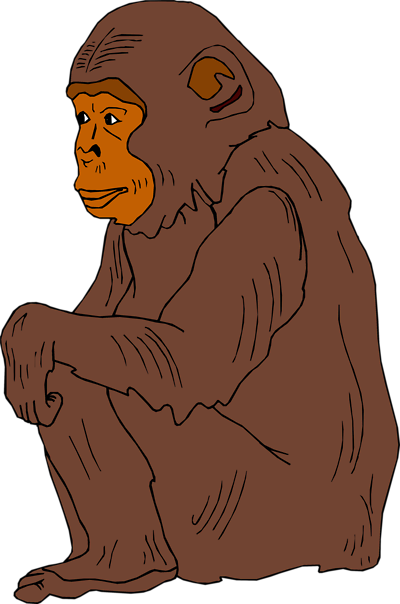 chimpanzee 20clip 20art clipart panda free clipart images chimpanzee clip art free Chimpanzee Coloring