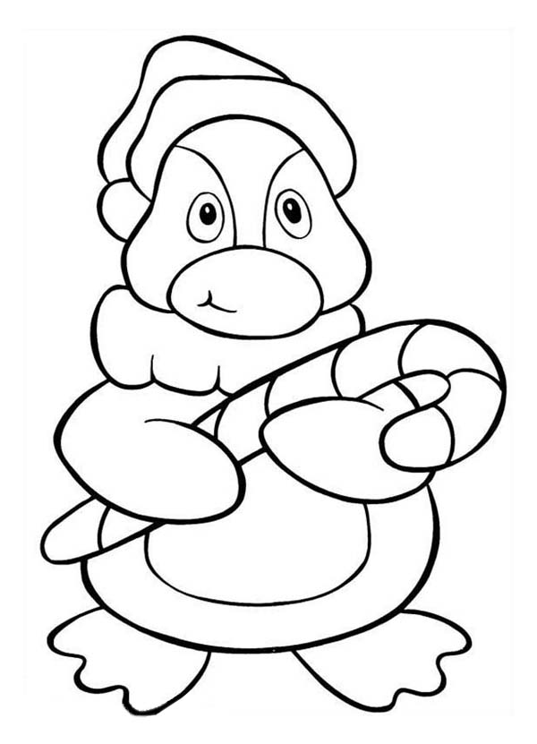 google images coloring pages penguin - photo#7