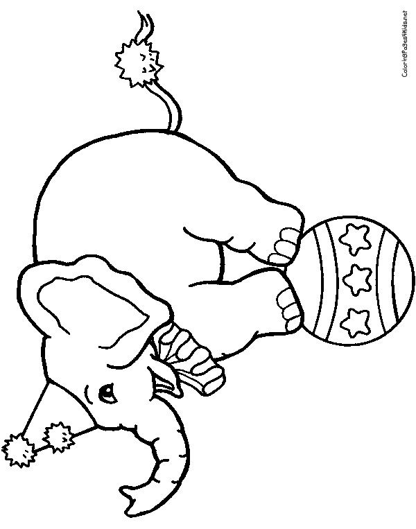 Circus Elephant Coloring Pages Circus Elephant Coloring Page