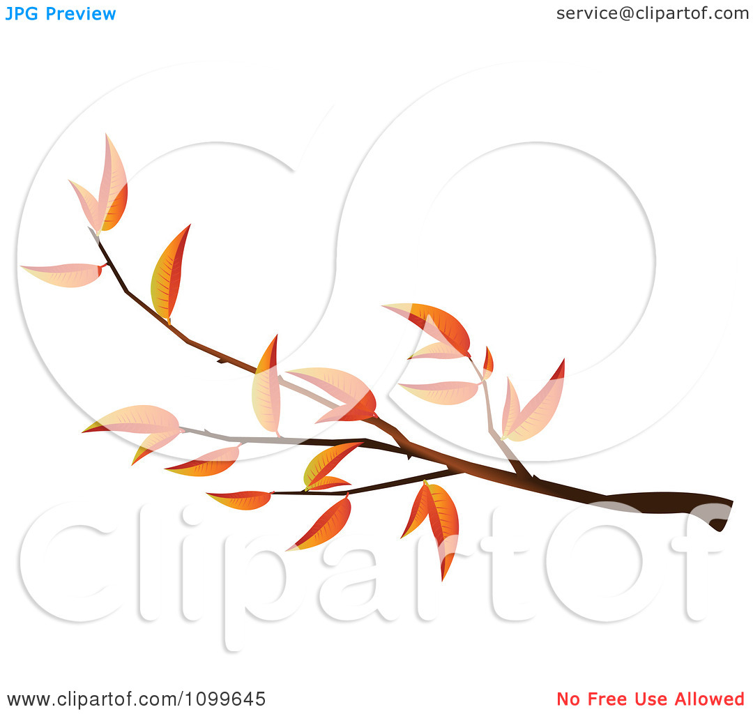 Clipart Autumn Tree Branch | Clipart Panda - Free Clipart ...