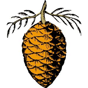 clip art pine cone clipart panda free clipart images rh clipartpanda com pine cone border clip art pine cone silhouette clip art
