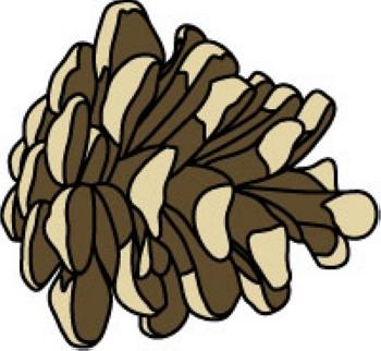 clip art pine cone clipart panda free clipart images rh clipartpanda com spruce pine cone clipart spruce pine cone clipart