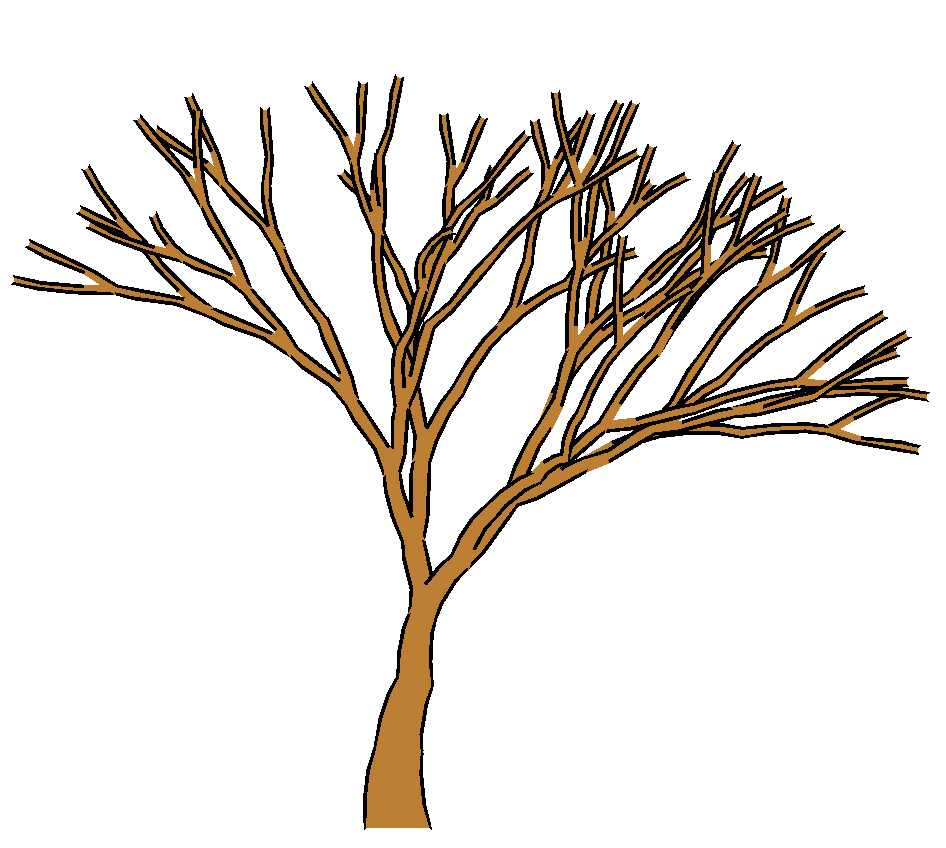 Clip Art Tree No Leaves   Clipart Panda - Free Clipart Images