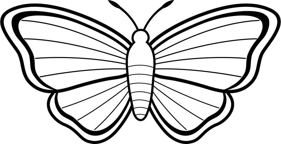 butterfly clip art black and white clipart panda free clipart images rh clipartpanda com butterfly clipart black and white free monarch butterfly clipart black and white