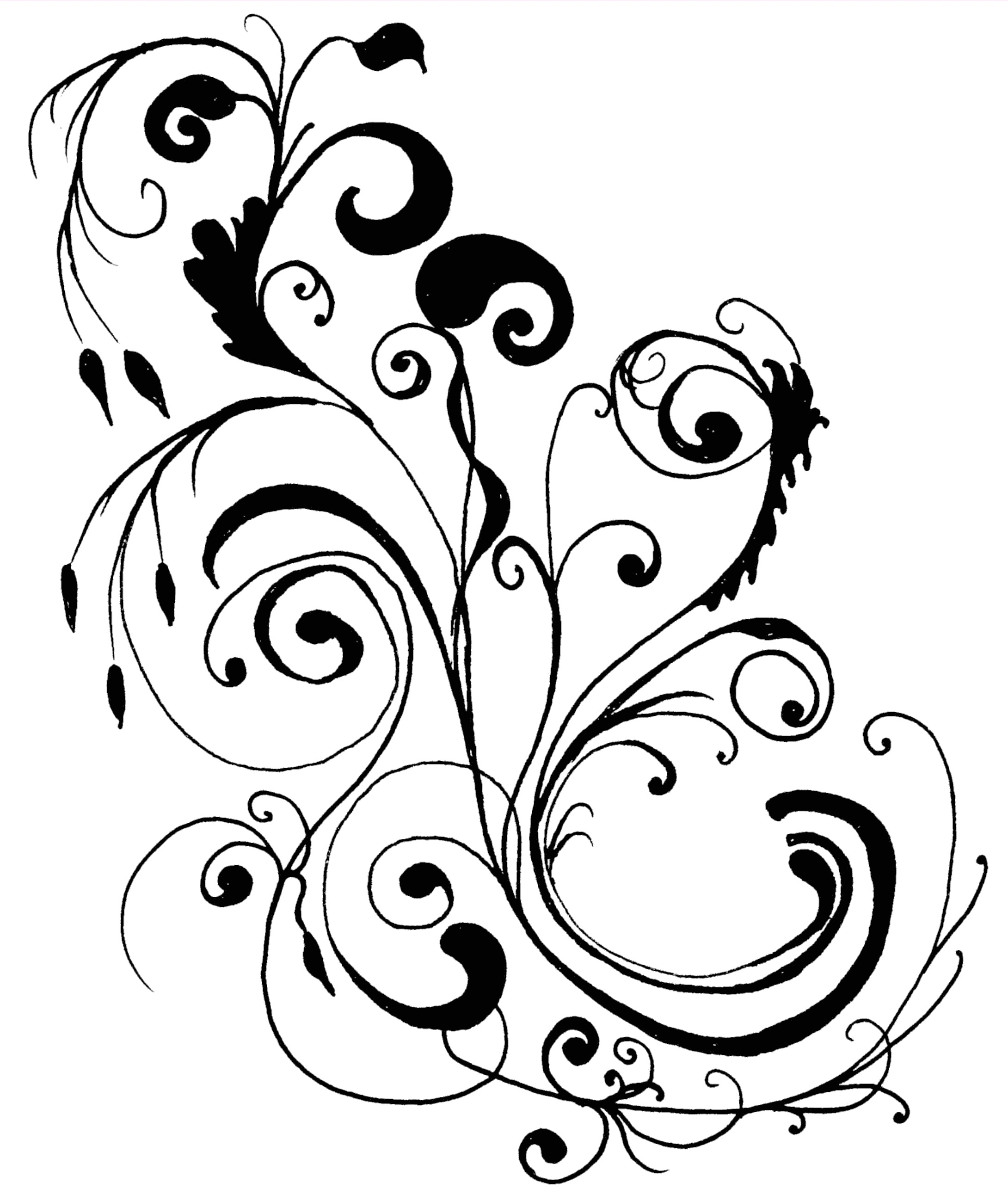 Line Drawing Flower Borders : Flower clipart panda free images
