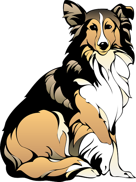 Image result for COLLIE DOG CLIPART