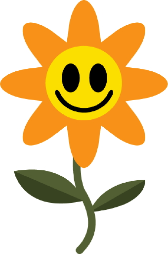 Make Someone Smile With Flowers Smiley Faces Galore