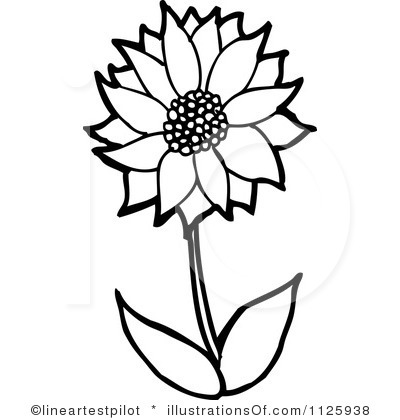 Flower outline pretty. Clipart panda free images