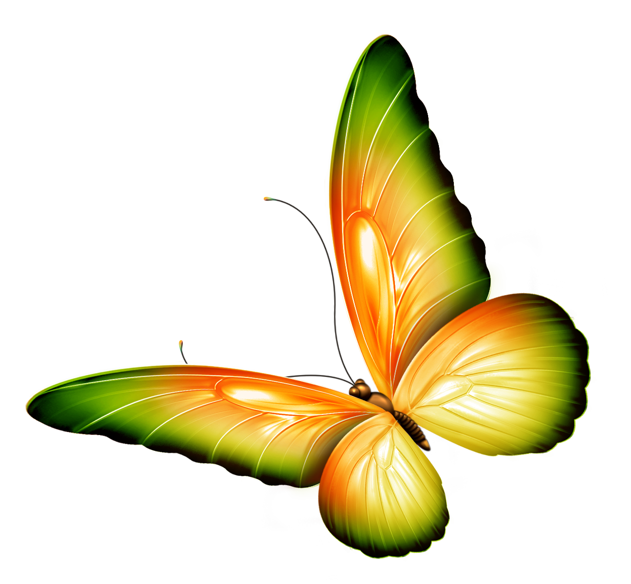 ... butterflies-border-Yellow_and_Green_Transparent_Butterfly_Clipart.png