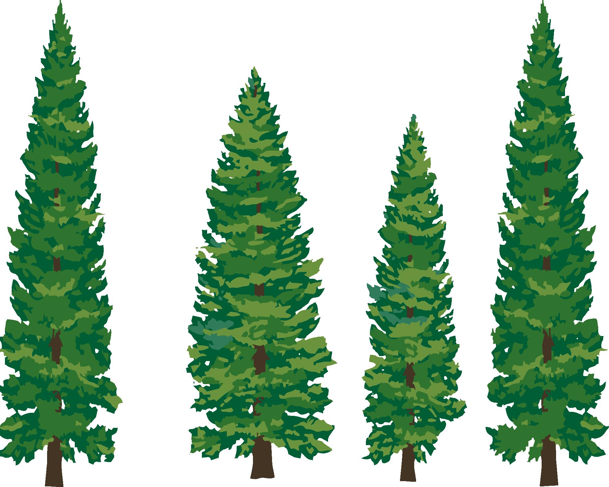 Clipart Pine Tree on Simple Pine Tree Clip Art