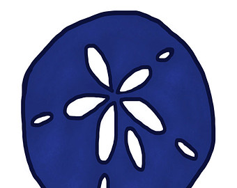Blue sand dollar illustration - photo#23