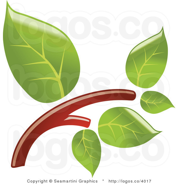 Tree Branch With Leaves Clipart Clipart treeTree Branch With Leaves