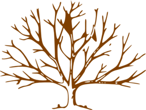 clipart%20tree%20without%20leaves