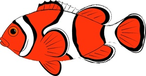 clown fish clipart clipart panda free clipart images rh clipartpanda com clown fish cartoon clipart clownfish clipart black and white