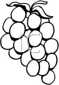 Grapes Clipart Black And White | Clipart Panda - Free ...