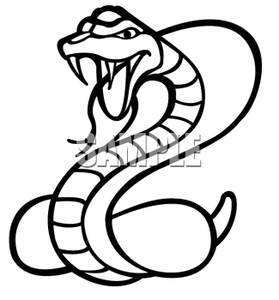 how to draw a king cobra deadly art