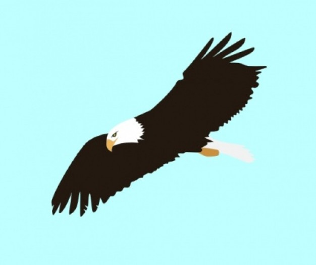 clip art soaring eagle - photo #4