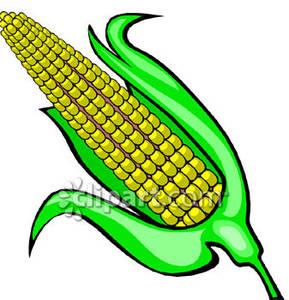 corn clip art free clipart panda free clipart images rh clipartpanda com corn clipart images corn clipart