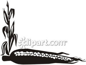 corn%20clipart%20black%20and%20white