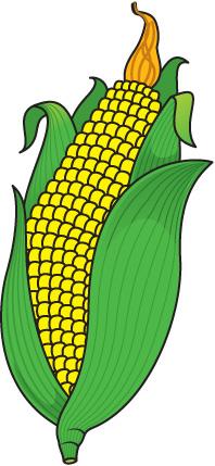 corn clip art free clipart panda free clipart images corn clip art cartoon corn clip art images