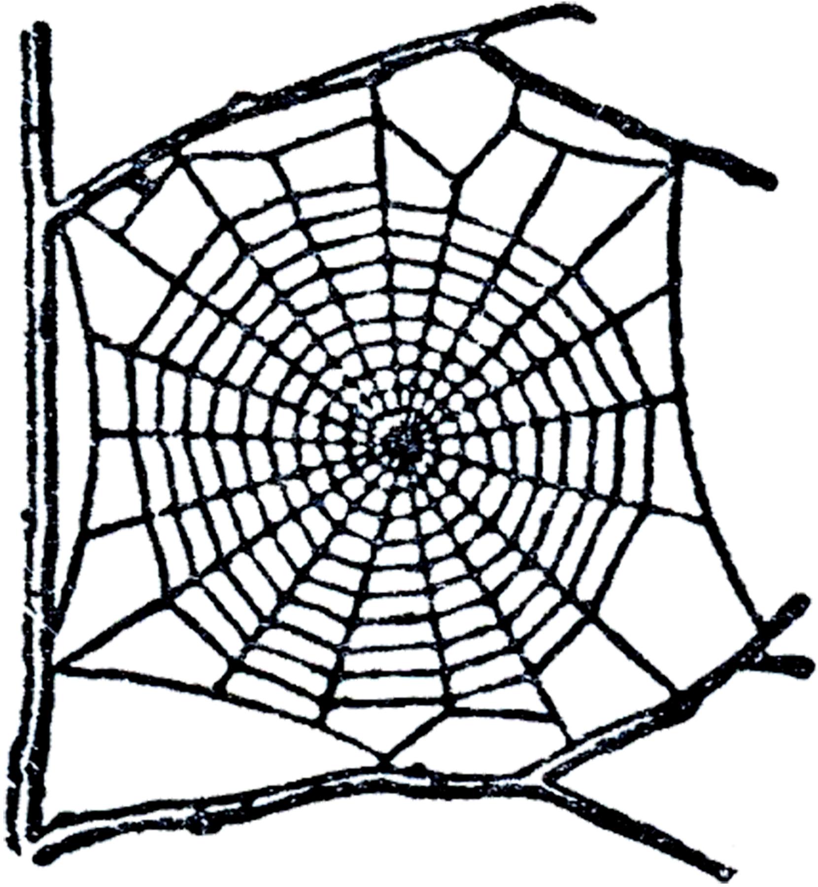 corner-spider-web-clipart-Free-Spider-Web-Clip-Art-GraphicsFairy jpgSpider Web Clip Art