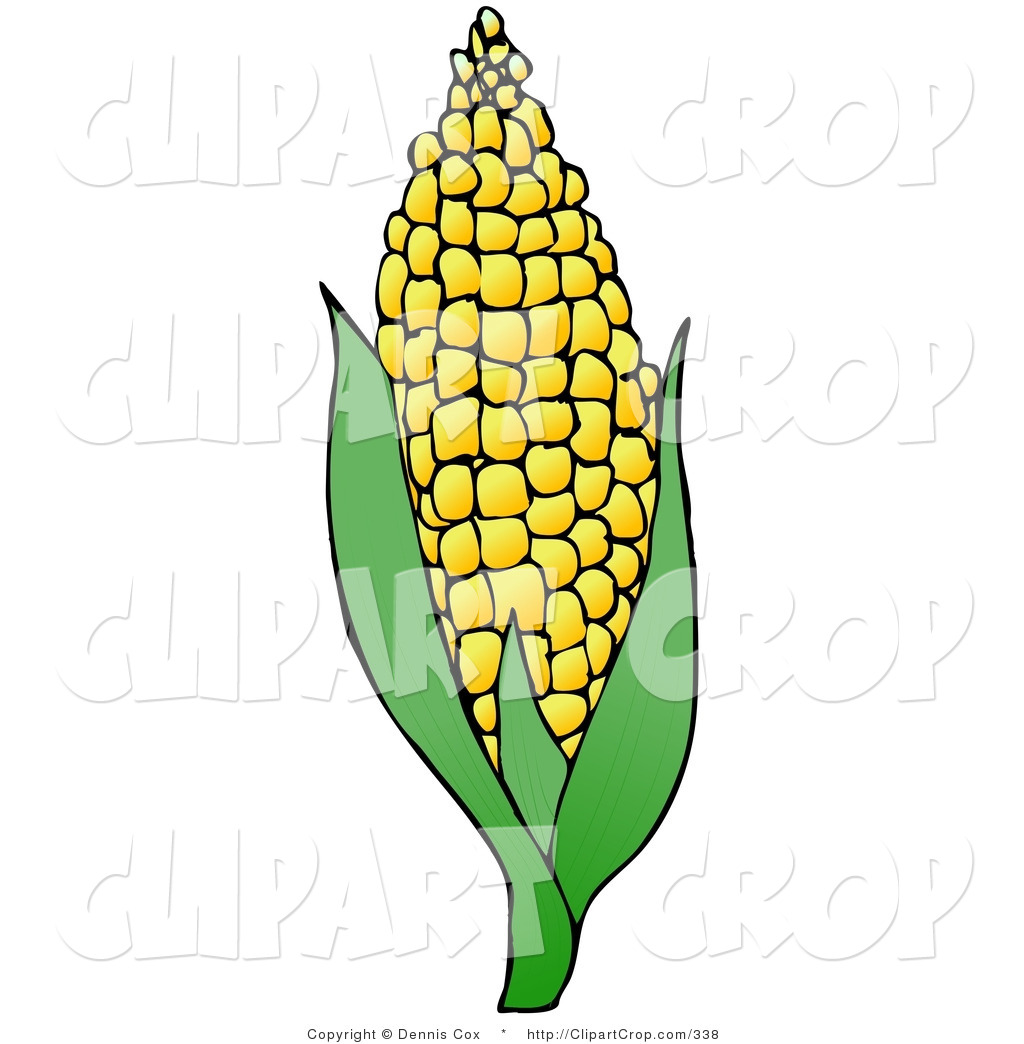 clipart-corn-clipart-clip-art-of-a-sweet-yellow-ear-of-corn-on-the-cob ...