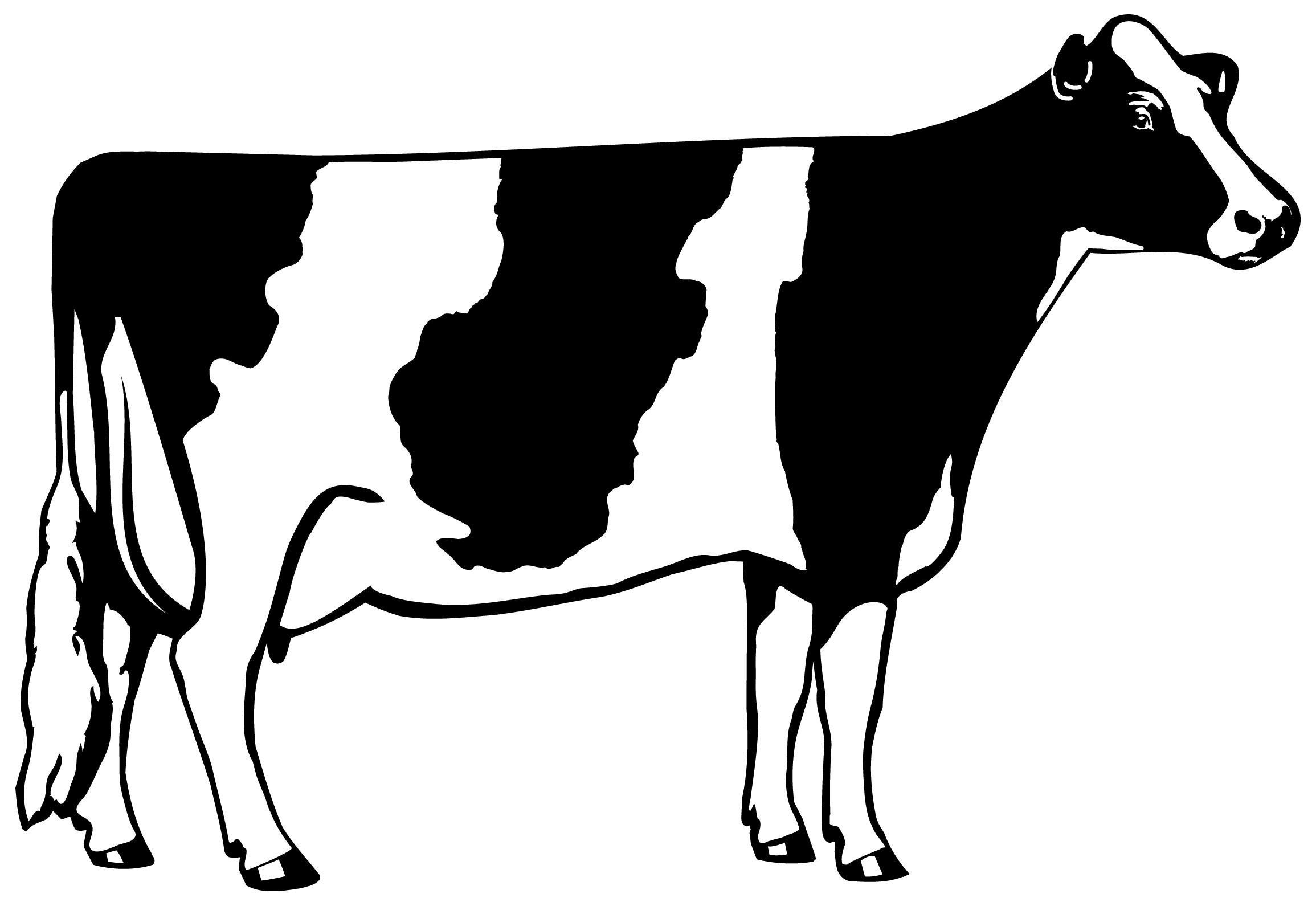 Cow Head Clipart Black And White | Clipart Panda - Free ...