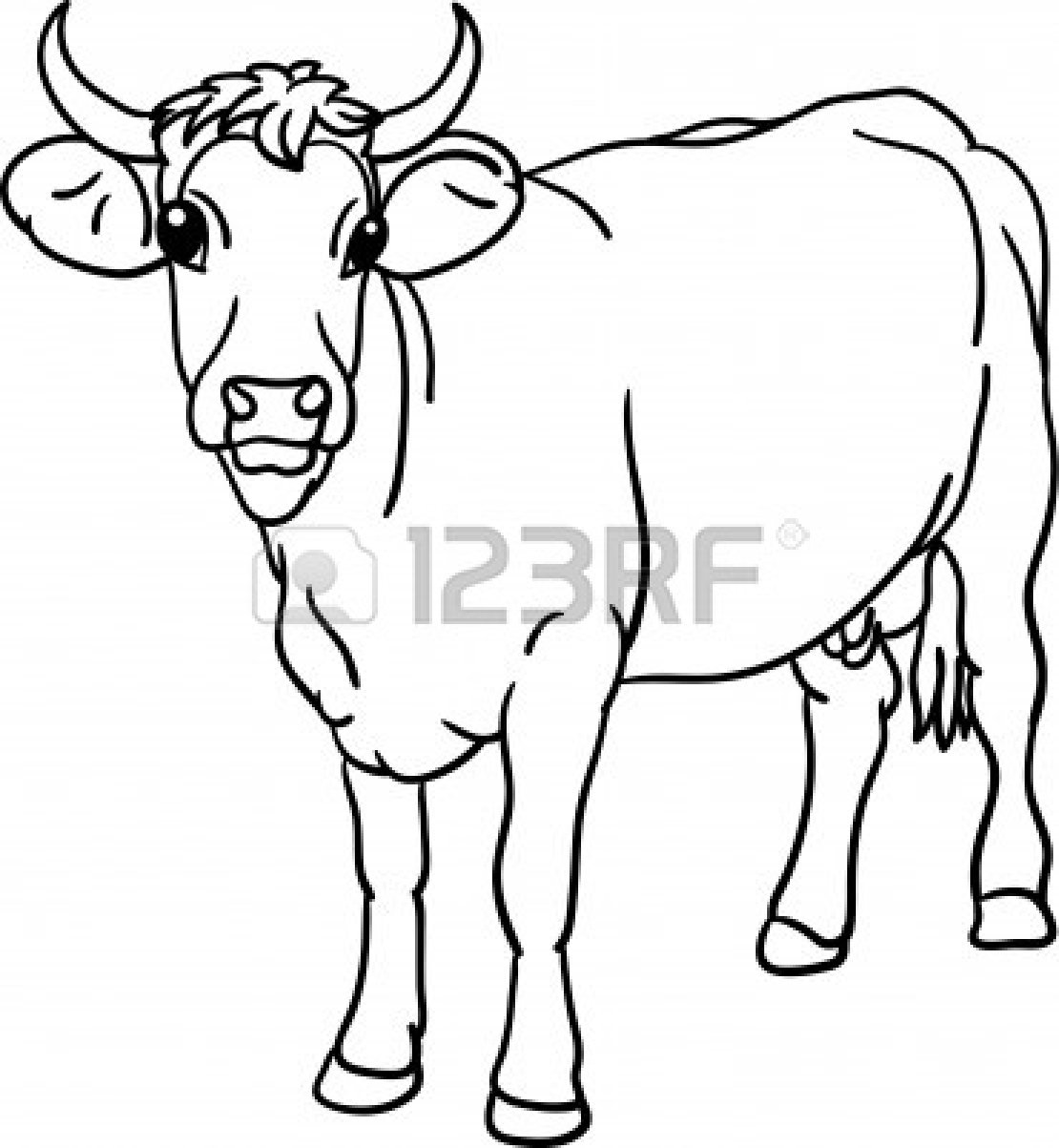 Beef Cow Outline Drawi...