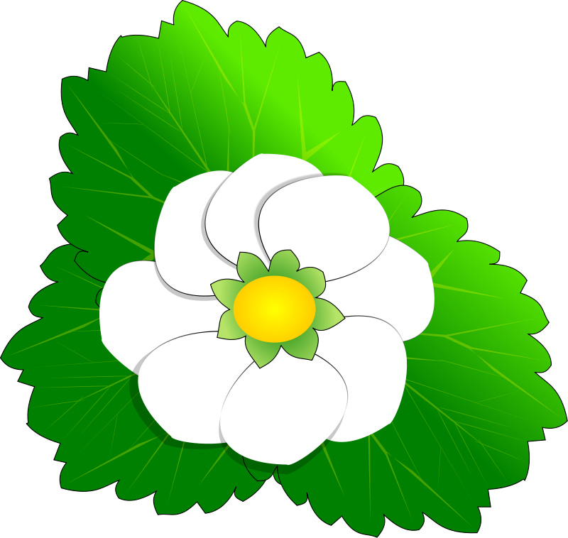 clipart line flower - photo #11