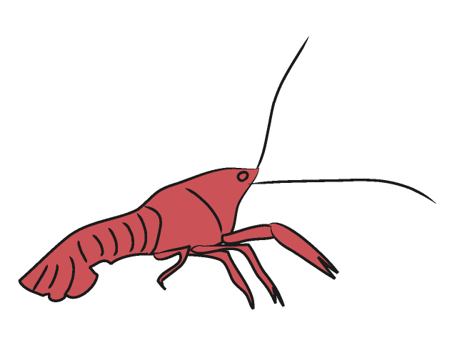 Crawfish Clipart | Clipart Panda - Free Clipart Images
