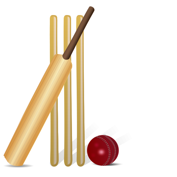 Image result for cricket clipart