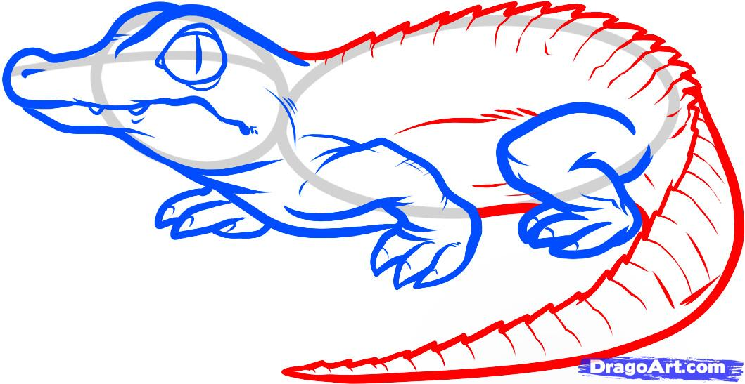Realistic crocodile drawing clipart panda free clipart for How to draw websites for free