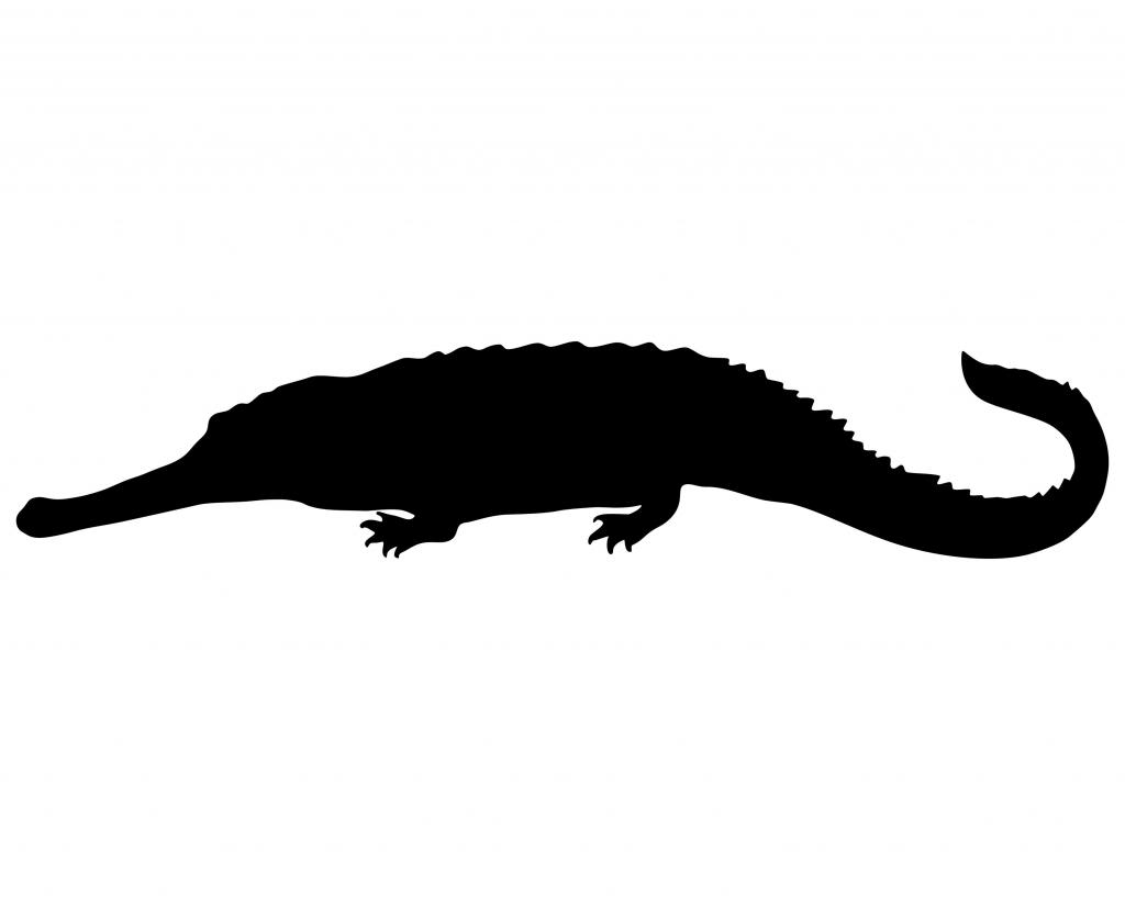 Crocodile Silhouette | Wallpapers Gallery