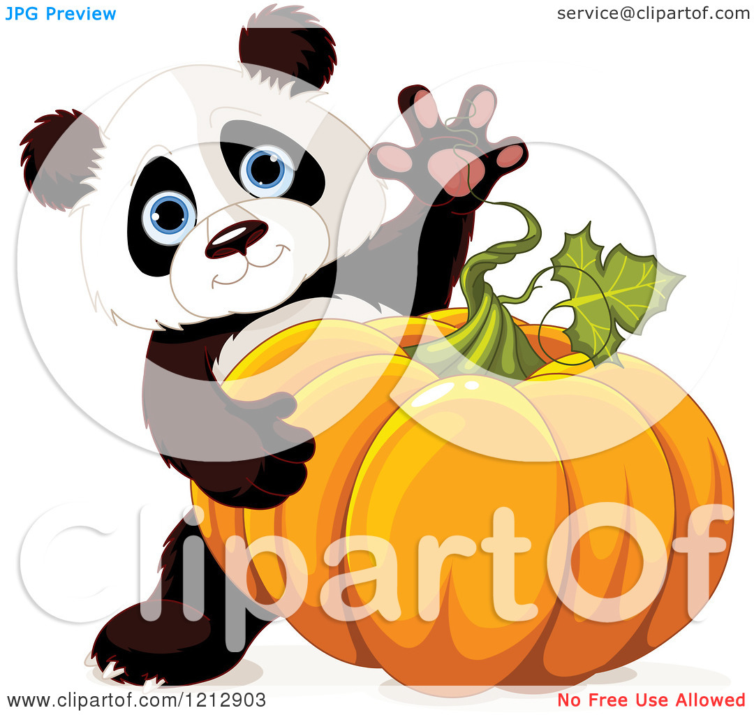 clipart panda pumpkin - photo #34