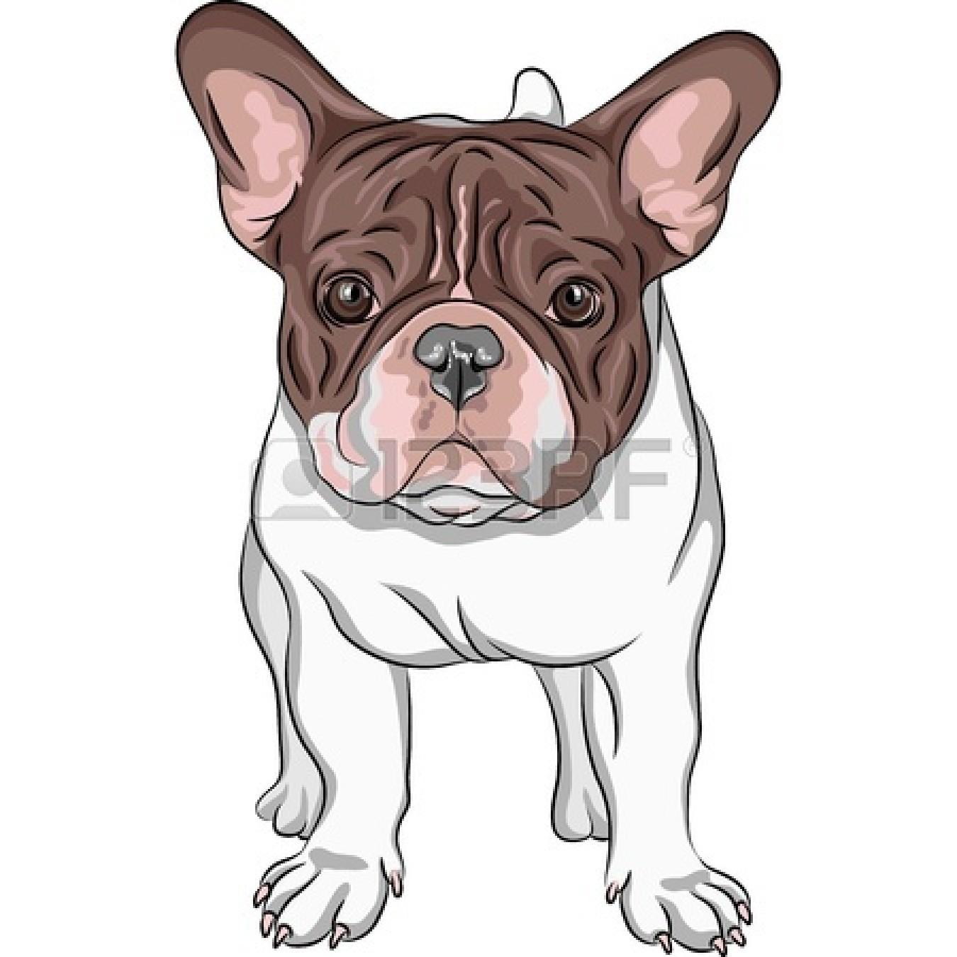 Cute Bulldog Drawing | Clipart Panda - Free Clipart Images