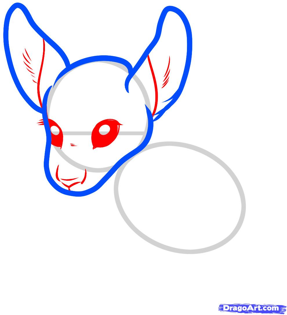 How To Draw A Baby Face Youtube Cute%20kangaroo%20drawing Cute Kangaroo  Drawing Clipart