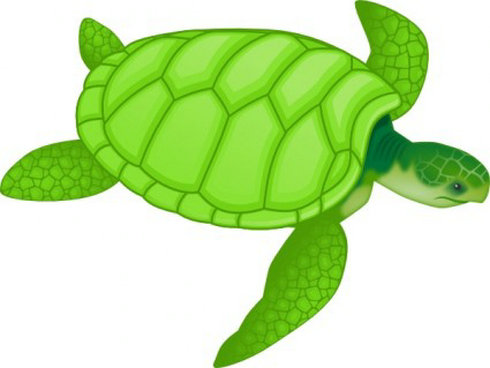cute-sea-turtle-clipart-Green-Sea-Turtle-Clip-Art.jpg: www.clipartpanda.com/categories/cute-sea-turtle-clipart