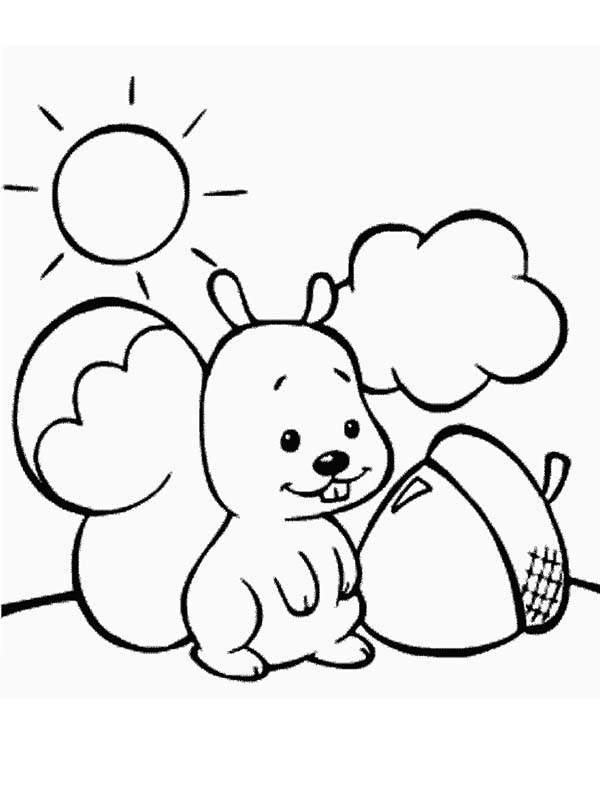 Cute Squirrel Coloring Page Clipart Panda Free Clipart