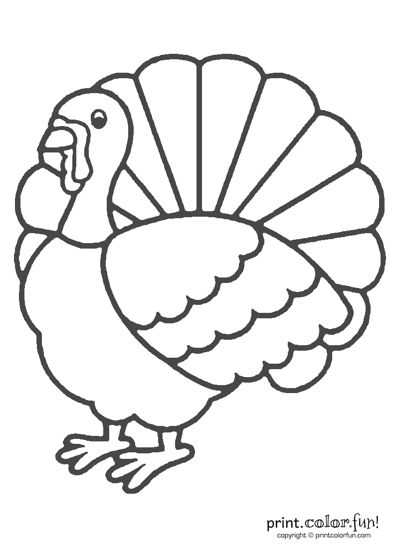 Turkey Art For Coloring Coloring Pages