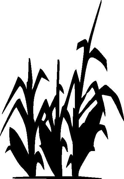 cypress%20clipart