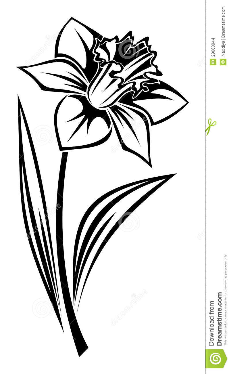 daffodil flower clip art car interior design. Black Bedroom Furniture Sets. Home Design Ideas