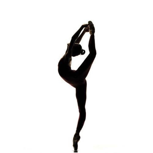 Dancer Silhouette Arabesque | Clipart Panda Free Clipart Images