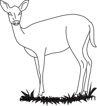 Search in addition Deer 7894683 in addition How To Draw A Buck Deer moreover Set Geometric African Animals Abstract Polygonal 572799568 in addition Heraldic Clip Art Gryphon2 3239630. on deer head drawings