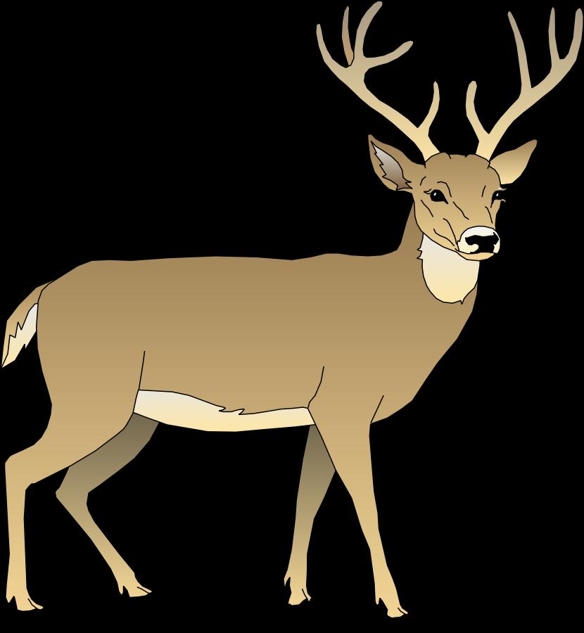 deer clipart clipart panda free clipart images rh clipartpanda com clip art deer images clip art deer silhouette