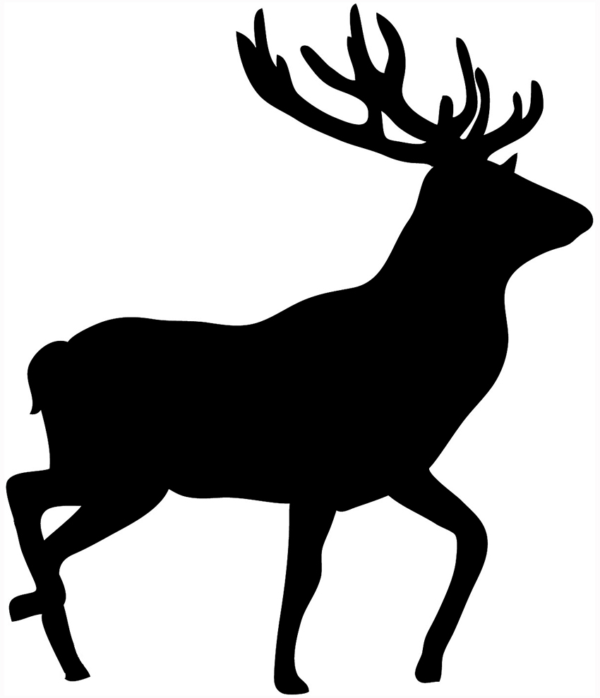 Whitetail Buck Clipart