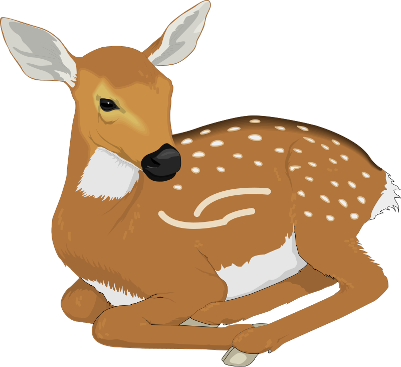 deer clipart clipart panda free clipart images rh clipartpanda com free deer clip art downloads free deer clipart images