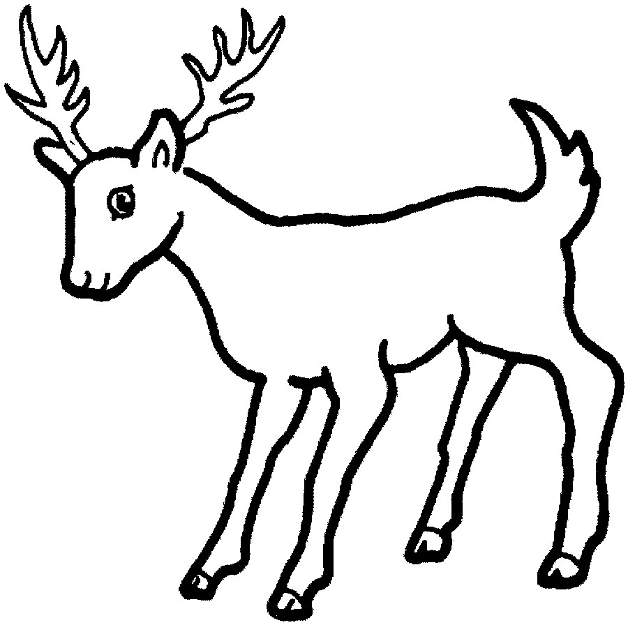 Deer Coloring Page | Clipart Panda - Free Clipart Images