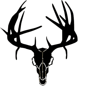 deer skull clip art whitetail clipart panda free clipart images rh clipartpanda com deer skull with flowers clipart clipart deer skull